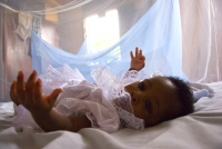 Infant and mosquito net